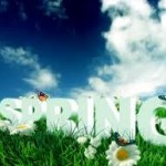 Spring-cleaning: Is Your House Ready for Spring?