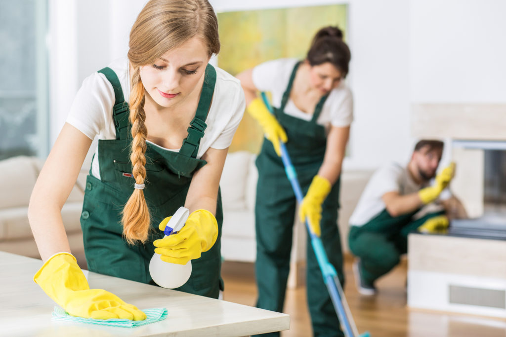 10 Reasons for a Professional Maid Service Sarasota | Go HouseMaids