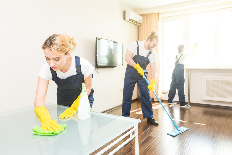 A cleaning service in Sarasota, FL at work.